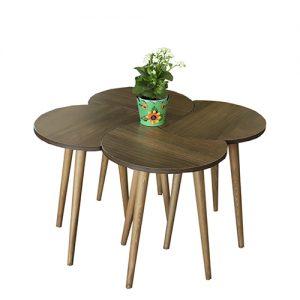طاولة قهوة موديل تروفا بني صناعة خشبية بأرجل من خشب الزان 4 قطع